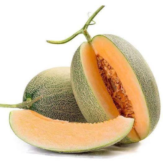 山東省濰坊市壽光市 正宗蜜瓜 哈密瓜西周密現摘5斤10斤包郵新鮮水果
