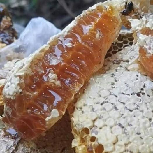 廣東省清遠市陽山縣 源于清遠陽山大山的純天然野生蜂蜜 每滴都來自不易你值得擁有