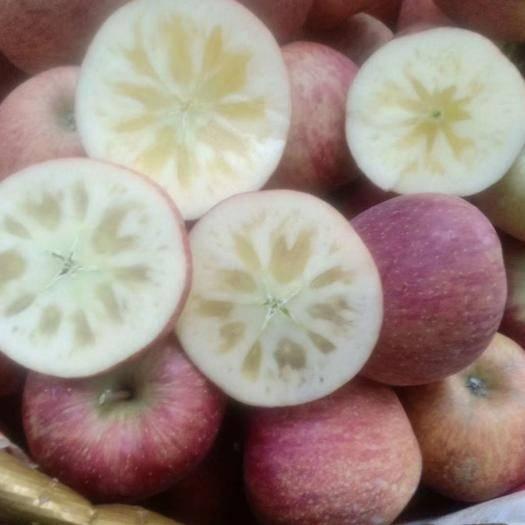 四川省涼山彝族自治州鹽源縣蘋果蜜 四川省大涼山鹽源糖心丑蘋果,好吃,看得見