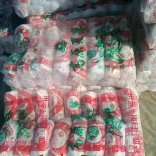 湖北省襄陽市宜城市 黃心娃娃菜,大量銷售中