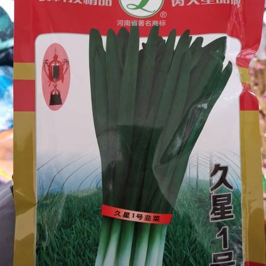 江蘇省宿遷市沭陽縣 久星一號韭菜種子250克一袋抗病耐寒高產高端韭菜種子