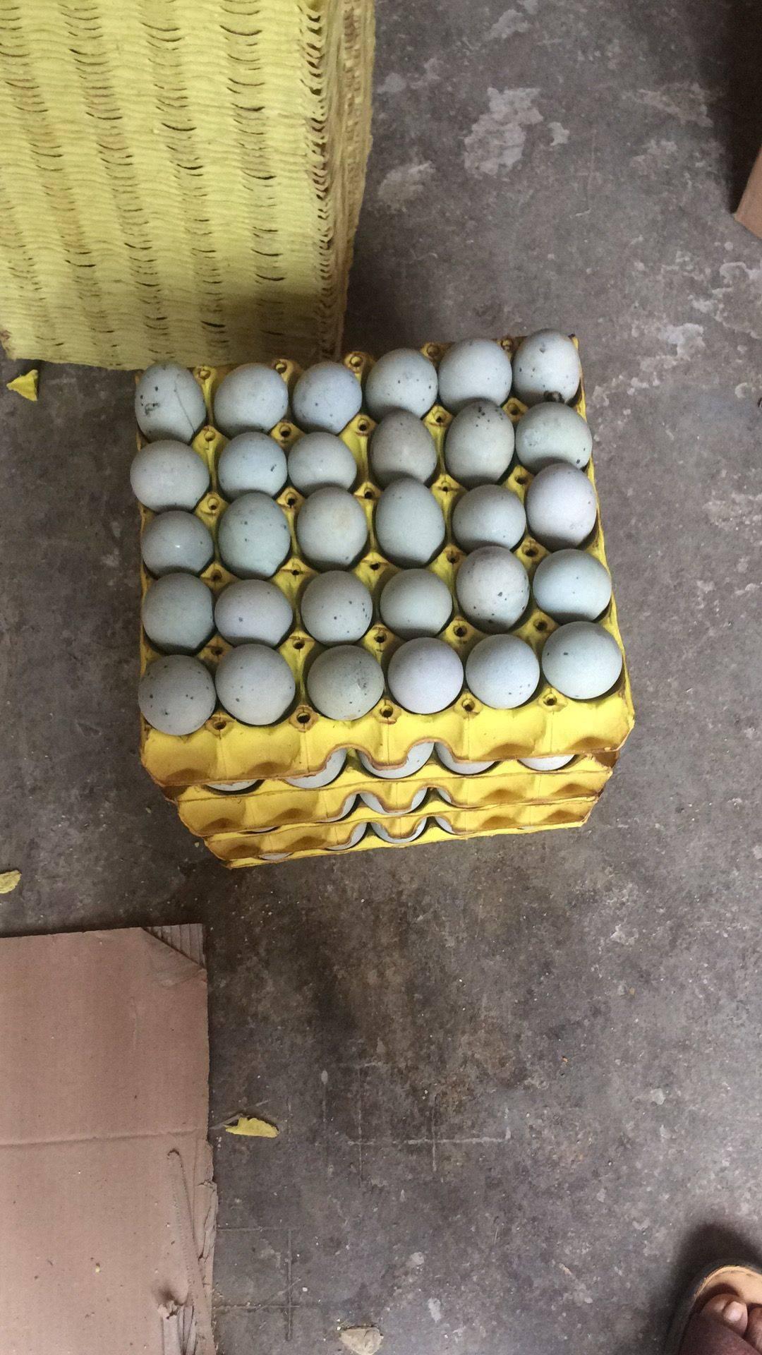 [无铅皮蛋批发] 我公司生产的皮蛋和盐蛋是严格执行有机产品的规范去生产加工们价格7元/斤