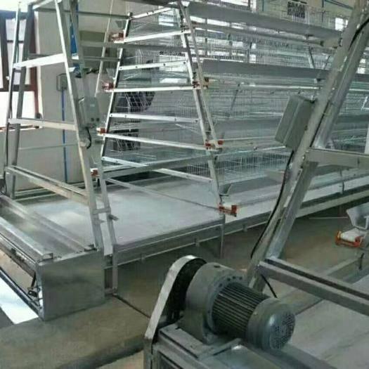 河南省駐馬店市西平縣 全自動養殖設備