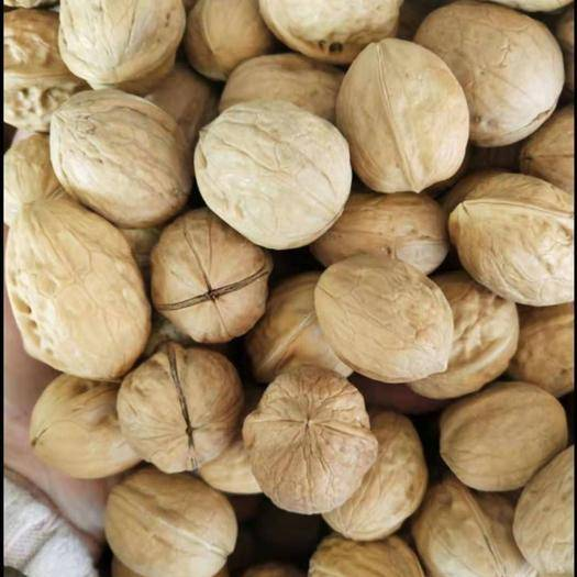 山西省忻州市原平市 老家的有機老樹核桃便宜賣嘍