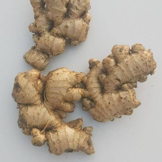 河南省焦作市博愛縣 生姜中的佼佼者,博愛懷姜,藥用價值最高,食用味道最好