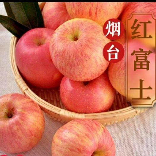 山東省煙臺市棲霞市 天下獨有的有機煙臺蘋果棲霞產地真正有機
