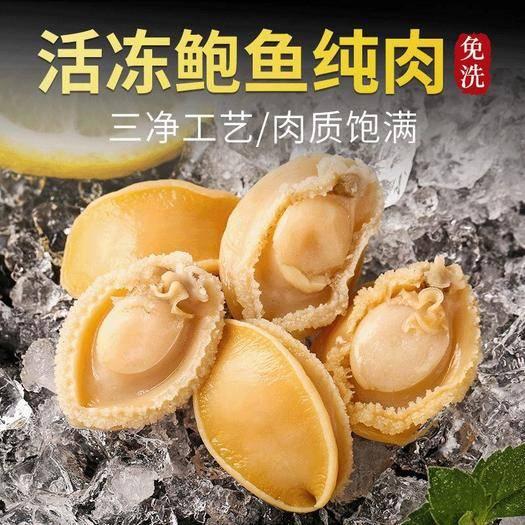 福建省漳州市龍海市 口口香170g鮑魚仔 塑料托盤25粒裝活凍鮑 去殼凈肉去肚即