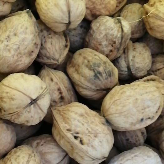 陜西省渭南市白水縣 本地產優質核桃,仁子包滿,營養價值高