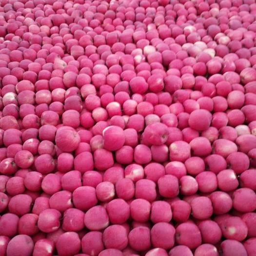 甘肅省平涼市靜寧縣高原紅蘋果 70mm以上 片紅 紙袋
