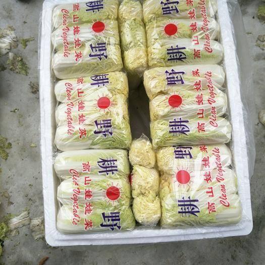 湖北省襄陽市宜城市高山娃娃菜 10兩以上