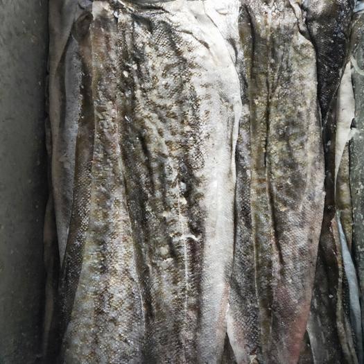 山東省威海市榮成市冰鮮魚皮 真鱈魚皮原料休閑食品專用