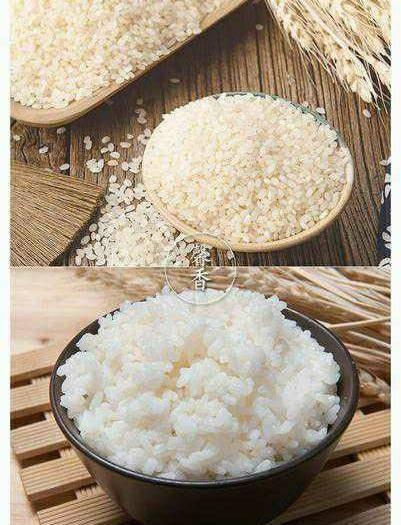 黑龍江省鶴崗市綏濱縣圓粒大米 一等品 晚稻 粳米