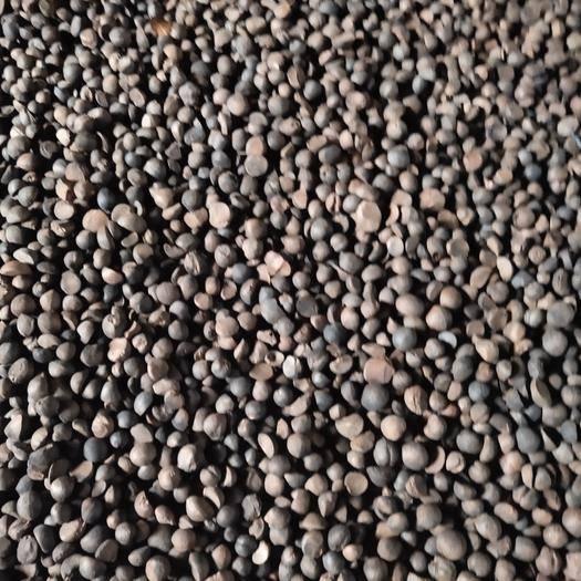 廣西壯族自治區柳州市三江侗族自治縣 茶籽油出油量2.2以上