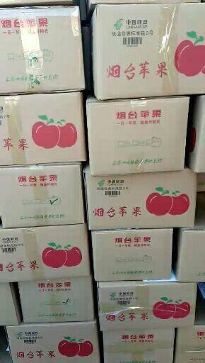 山東省煙臺市棲霞市紅富士蘋果 一級高檔禮盒裝富士,