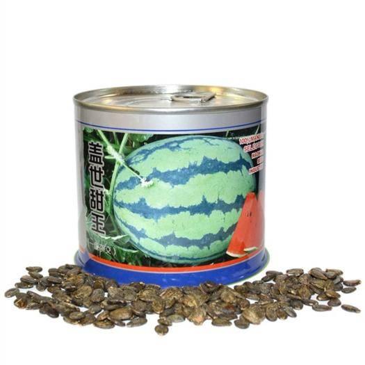 河南省鄭州市二七區 蓋世甜王西瓜種子 花皮早熟西瓜種子 高圓形 800粒