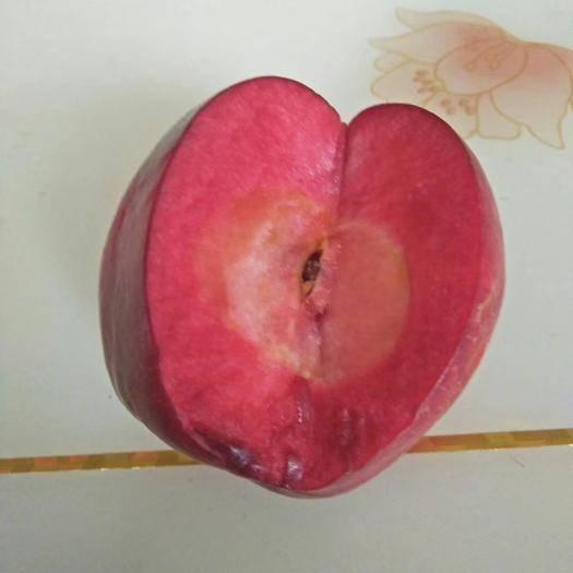 河南省許昌市鄢陵縣 瑞士紅色之愛紅肉蘋果雙十一特惠價來臨