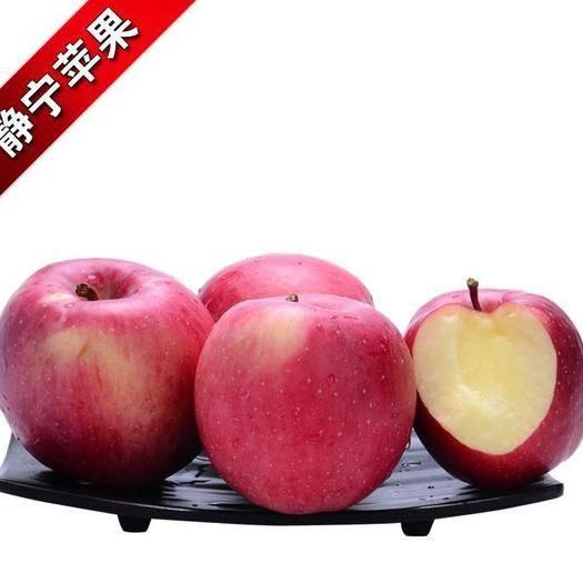 甘肅省平涼市靜寧縣 靜寧蘋果,舌尖上的森林果園。中國的好蘋果,世界的好味道。