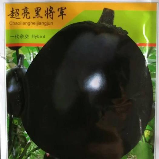 河南省商丘市夏邑縣 超亮黑將軍茄子種子 一代雜交抗病高產國外引進品種10克袋