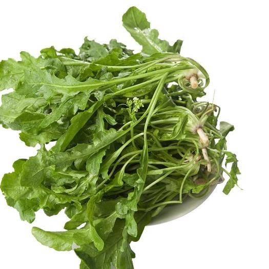 河南省商丘市夏邑縣小白菜種子 包郵薺薺菜種子 快菜種子 天然野菜種子 品質極佳