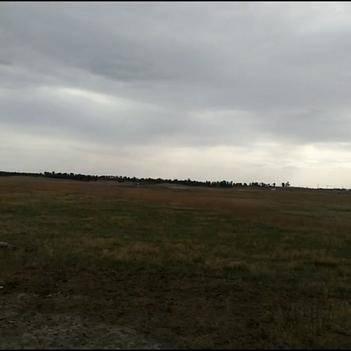荒地 可建設性草原