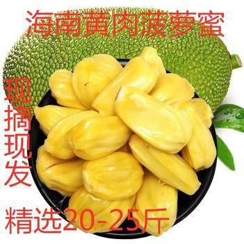 马来1号 质量保证精品饱满圆润20-50斤果下单24小时内发三天左右到