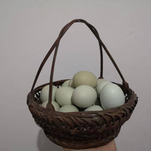 湖南省長沙市長沙縣 放養土雞蛋,生態養殖,好吃營養健康!