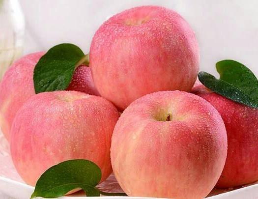 湖北省恩施土家族苗族自治州恩施市 紅富士蘋果