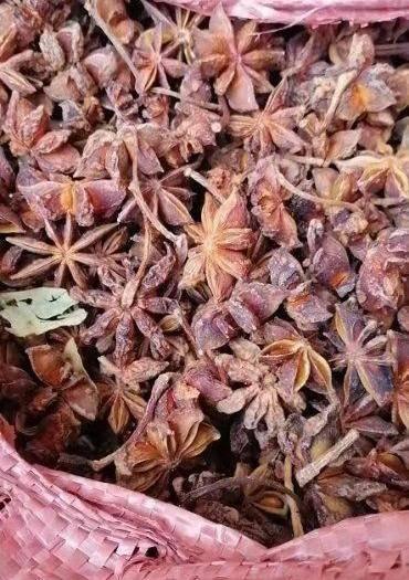 河南省鄭州市管城回族區 廣西大紅八角,大料,大茴香,過篩貨,誠信第一,質量第一。