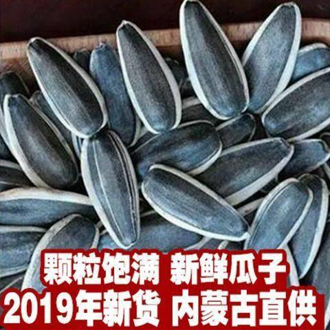 內蒙古自治區呼和浩特市土默特左旗 內蒙向日葵生瓜子5斤9斤葵花籽2019新貨散裝農家特大大顆粒