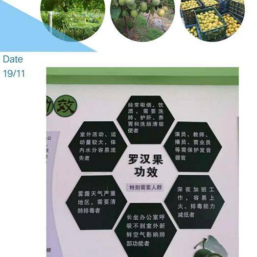 貴州省黔東南苗族侗族自治州榕江縣 羅漢果大賣有需要的馬上聯系