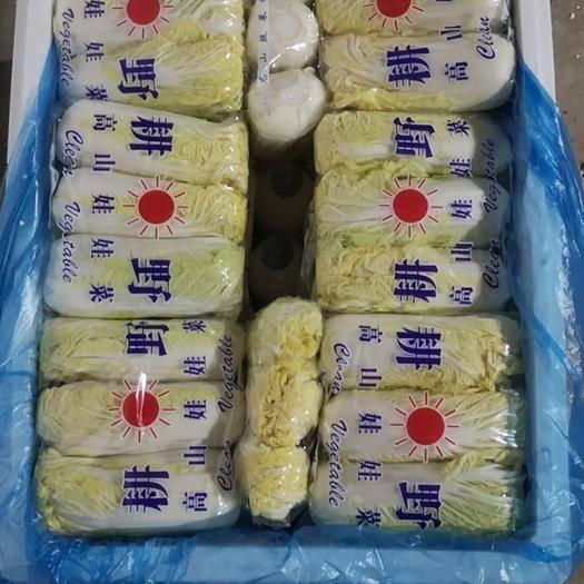 河南省安陽市內黃縣 精品娃娃菜