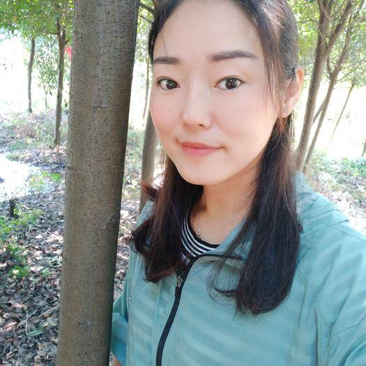浙江省衢州市江山市 高桿紅葉石楠9到10公分,桿高1米八以上,需要聯系包上車