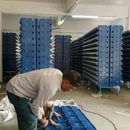 安徽省合肥市廬陽區其它農資 小龍蝦大龍蝦蟹養殖,室內小龍蝦養殖技術