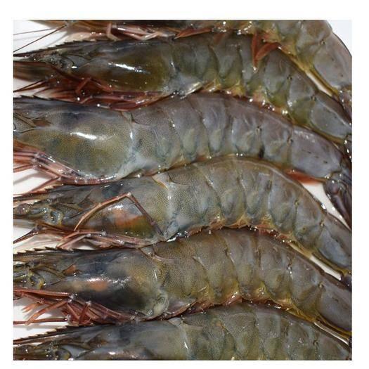 山東省青島市城陽區 20只野生大虎蝦草蝦青島超大冷凍基圍蝦鮮蝦緬甸黑虎大蝦海蝦