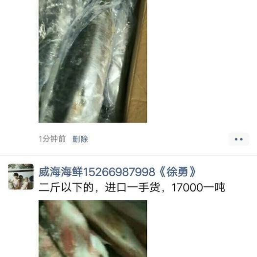 山東省威海市環翠區 鲅魚
