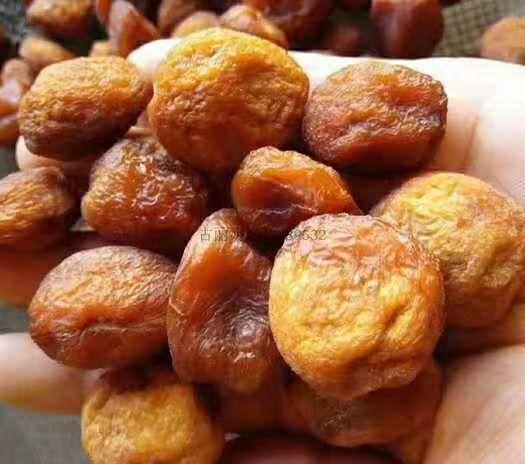 新疆維吾爾自治區伊犁哈薩克自治州鞏留縣 樹上干杏,綠色健康,口感純正,多吃不僅健腦,且有意于身體。