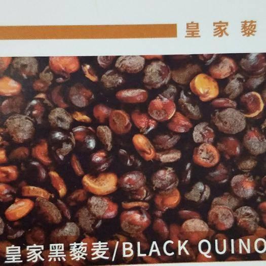 遼寧省大連市中山區 玻利維亞皇家黑藜麥,紅藜麥