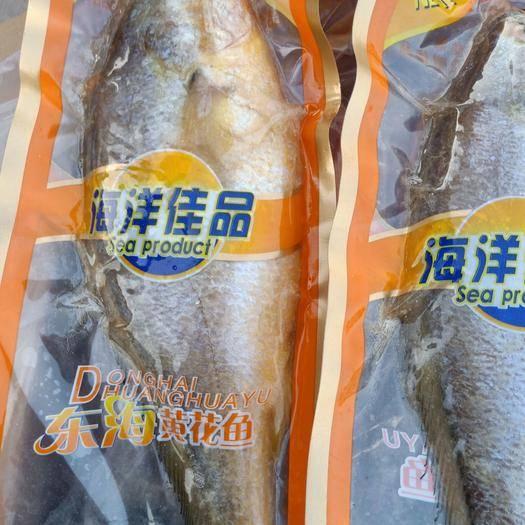 山東省濱州市沾化區 黃花魚