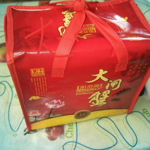 江蘇省蘇州市常熟市蘇州大閘蟹 十只公蟹(3.0-3.4 )168