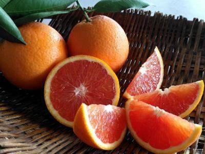 四川省成都市簡陽市 塔羅科血橙苗,基地批發直銷,假一賠十,免費售后技術服務。