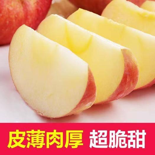 河南省安陽市安陽縣 【包郵】山西紅富士蘋果水果新鮮當季脆甜丑蘋果5/10斤起拍