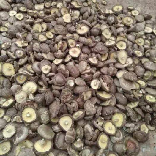 湖北省十堰市竹山縣普通香菇 特定的地域,菌材,生長出的人間美味佳肴,口感,嫩度一流