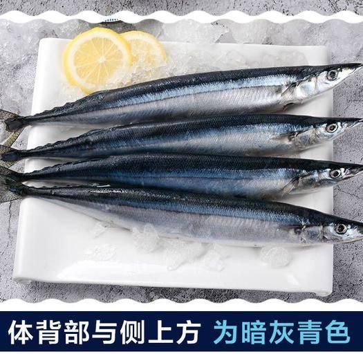 江蘇省鹽城市亭湖區 秋刀魚 鮮 冷凍順豐包郵4斤新鮮魚海鮮深海魚體長30cm以
