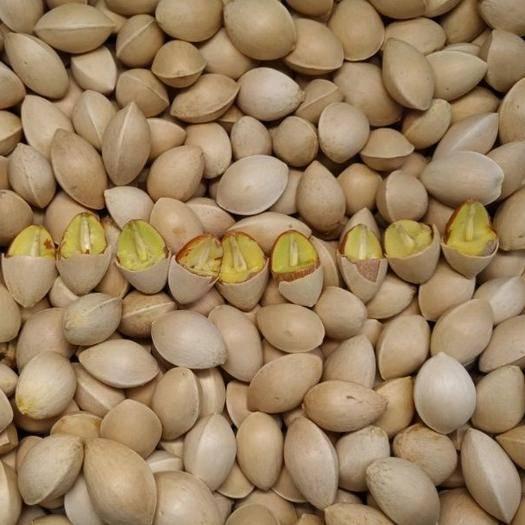 江苏省徐州市邳州市蓝丰蓝莓种子 银杏种子 银杏果价格 银杏树种子多少钱一斤