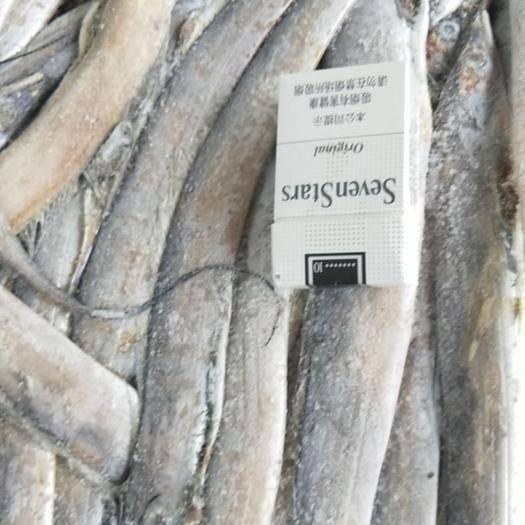 山東省威海市環翠區冷凍帶魚 燈光船凍帶魚  擦皮