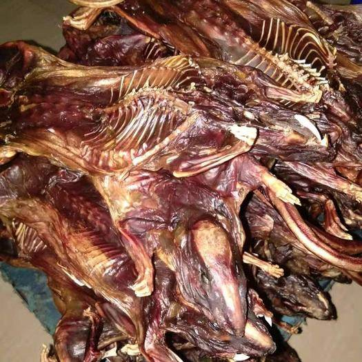 廣西壯族自治區來賓市武宣縣山鼠干 出售田老鼠干180