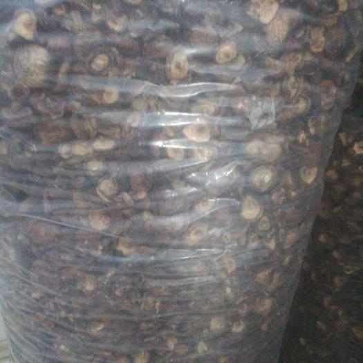 河南省南陽市南召縣香菇片 菇農不容易呀