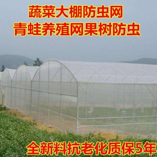 河北省衡水市安平縣 防蟲網大棚專用加厚蔬菜40目60目80目農用果樹尼龍網罩青蛙