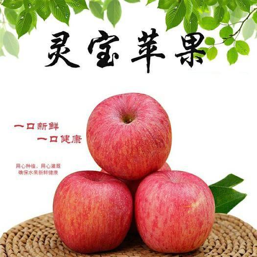 河南省三門峽市靈寶市靈寶蘋果 (紙加膜)冰糖心(包郵)高山紅富士,家鄉的味道!