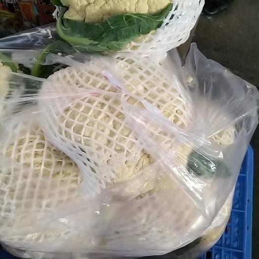 陜西省西安市閻良區白面青梗松花菜 松散 2~3斤